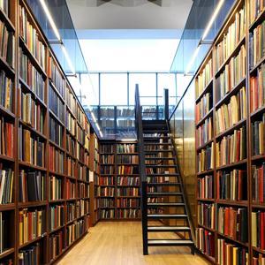 Библиотеки Иланского