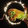 Цирки в Иланском